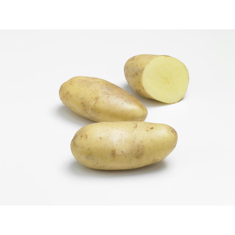 Pommes de terre Spunta calibre 28/35, 25 plants