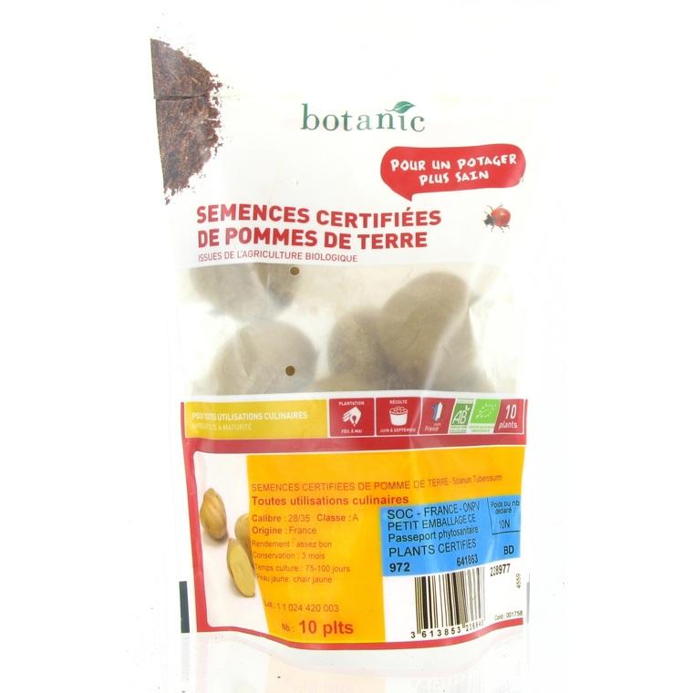Pommes de terre Passion bio calibre 0001, 10 plants