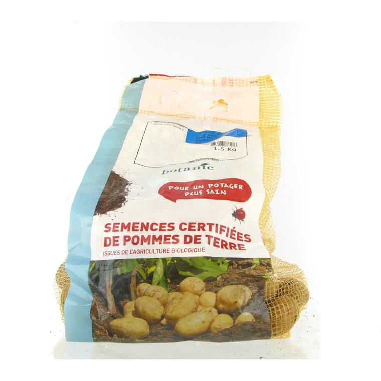 Pommes de terre Bintje bio calibre 0001, 1,5 kg