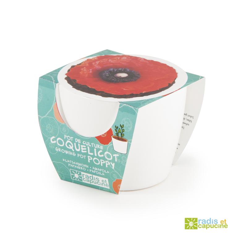 Mini kit céramique Coquelicot