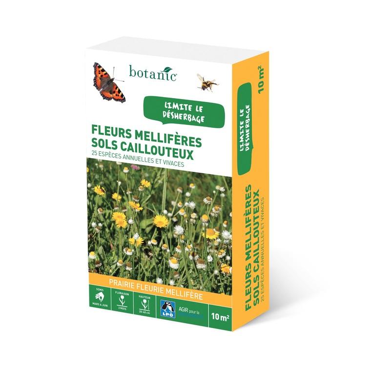 Fleurs mellifères sols caillouteux
