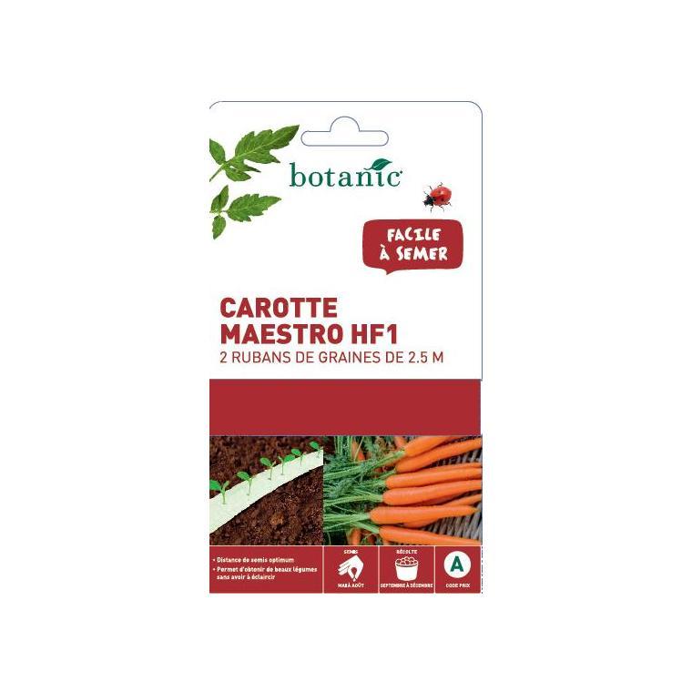 Ruban carotte Maestro