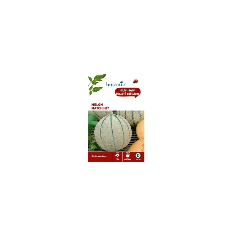 Melon match hybride f1 x2 sachets