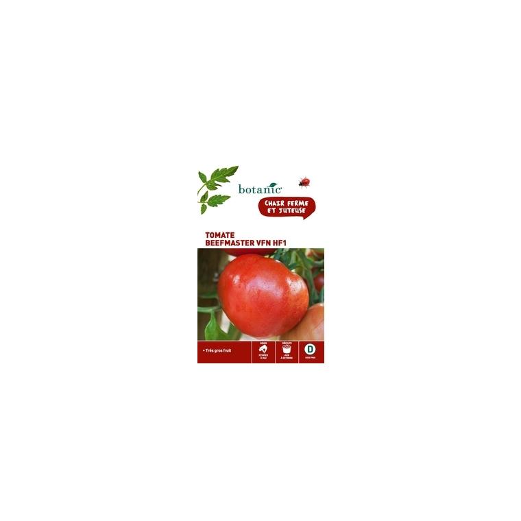 Tomate Beefmaster Vfn HF1 x2 sachets