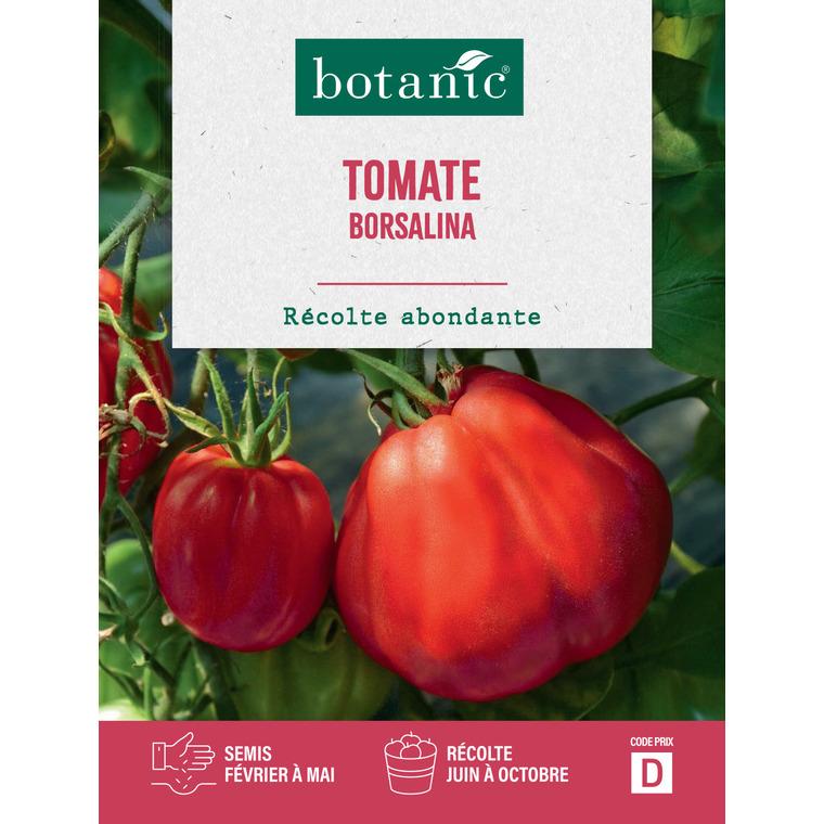Tomate borsalina hf1 x2 sachets