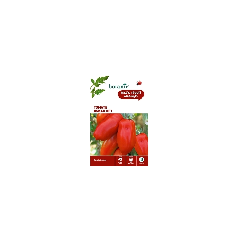 Tomate oskar hf1