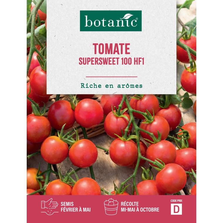 Tomate Supersweet 100 HF1