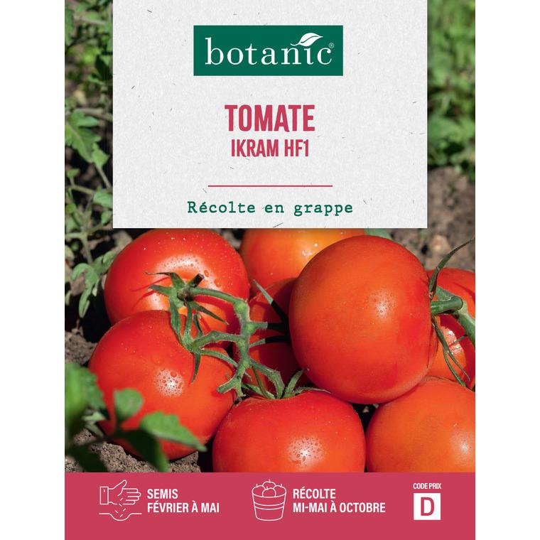 Tomatei ikram hybride f1
