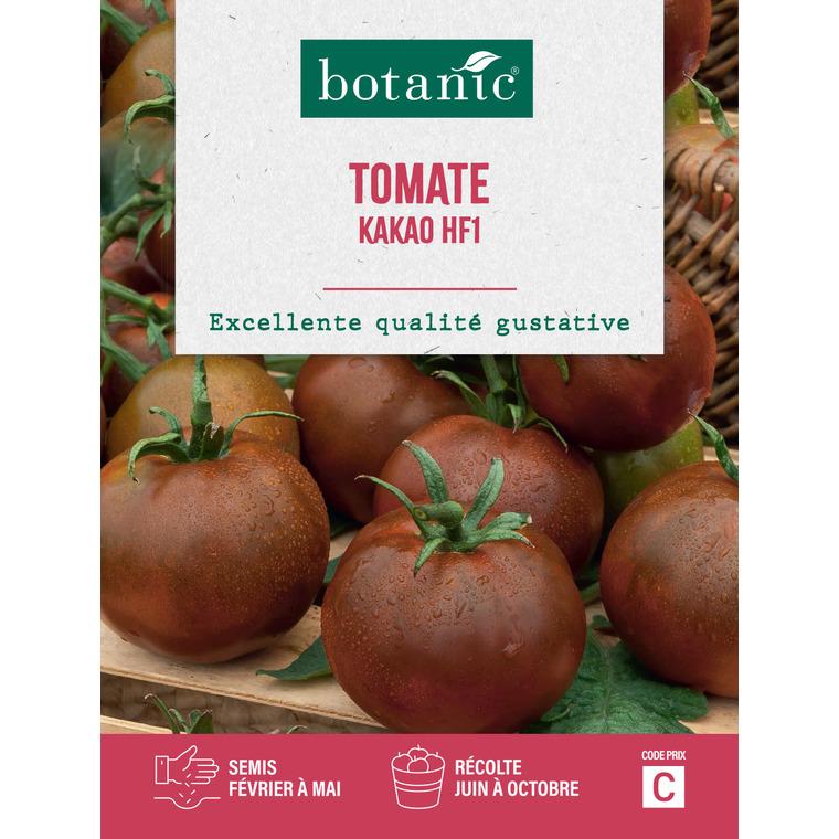 Tomate kakao f1 Insolite