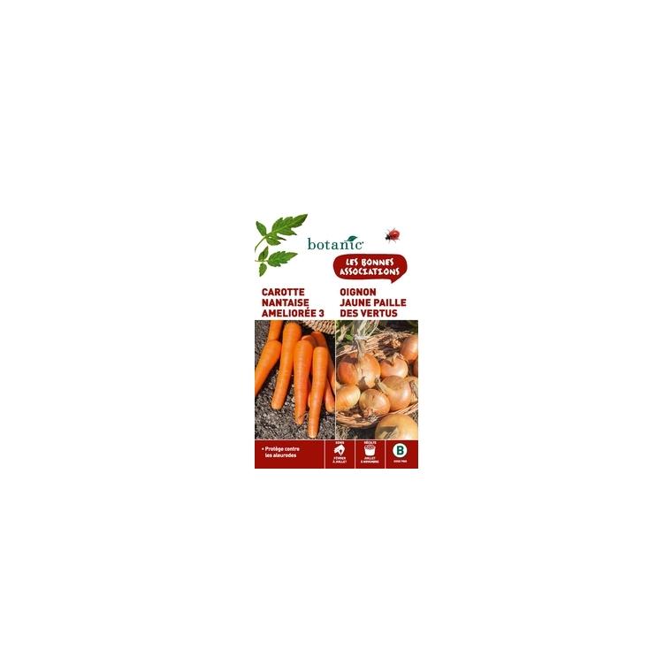 Graines de carotte nantaise et oignon jaune paille vertus botanic®