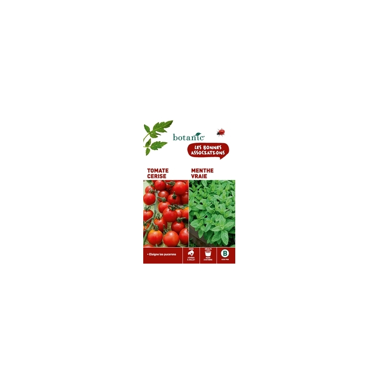 TOMATE CERISE + MENTHE VRAIE Duo compagne