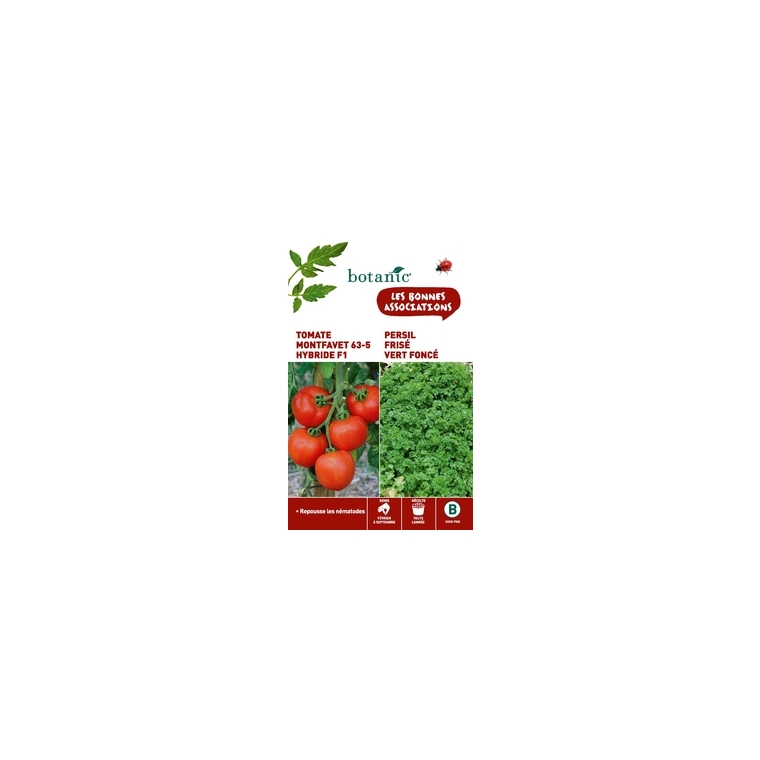 Tomate montfavet 63/5 hybride f1 + persil frise vert fonce Duo compagne