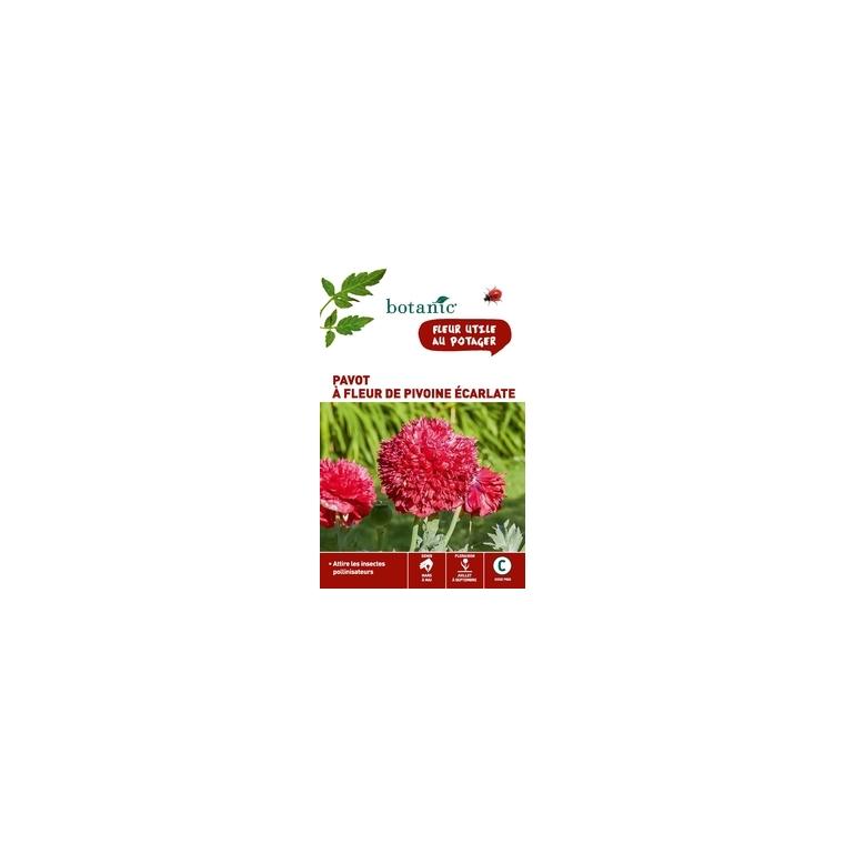 Pavot à fleur de pivoine écarlate x 2 sachets