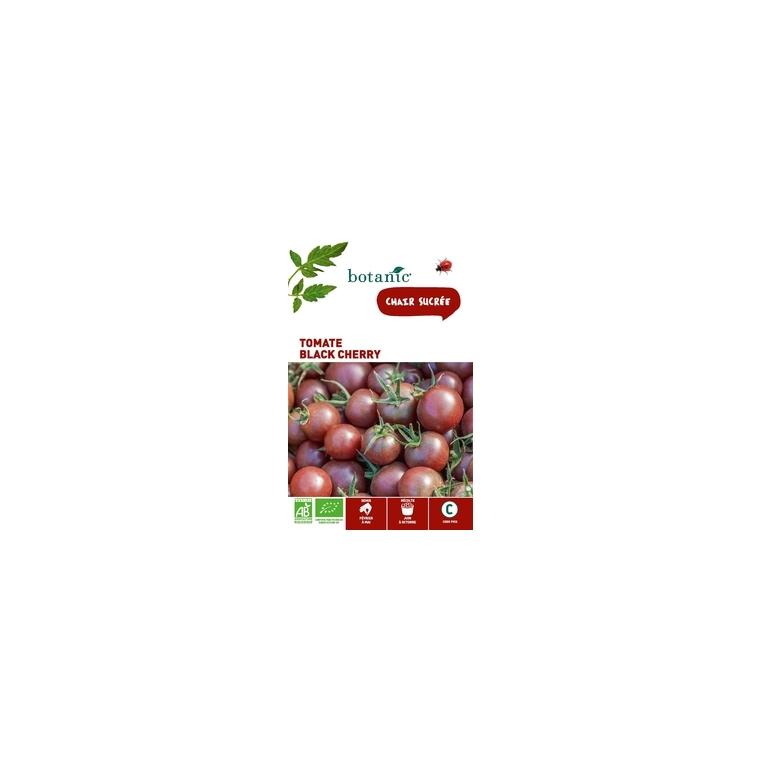 Tomate Black Cherry AB BIO
