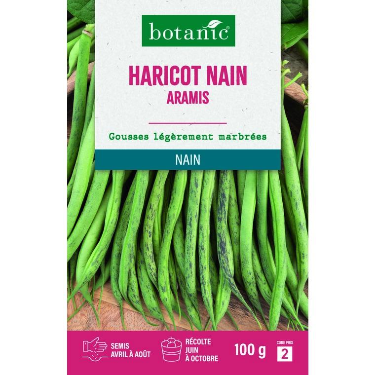 Haricot nain aramis extra-fin sans fil 100 gr