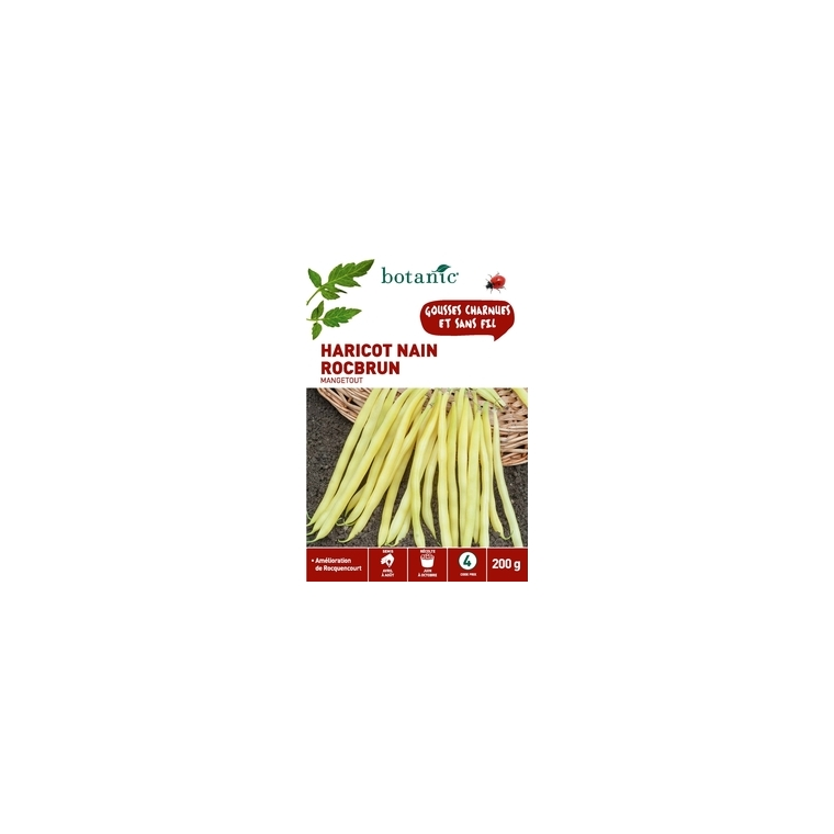Haricot Nain Rocbrun Mangetout 200 gr