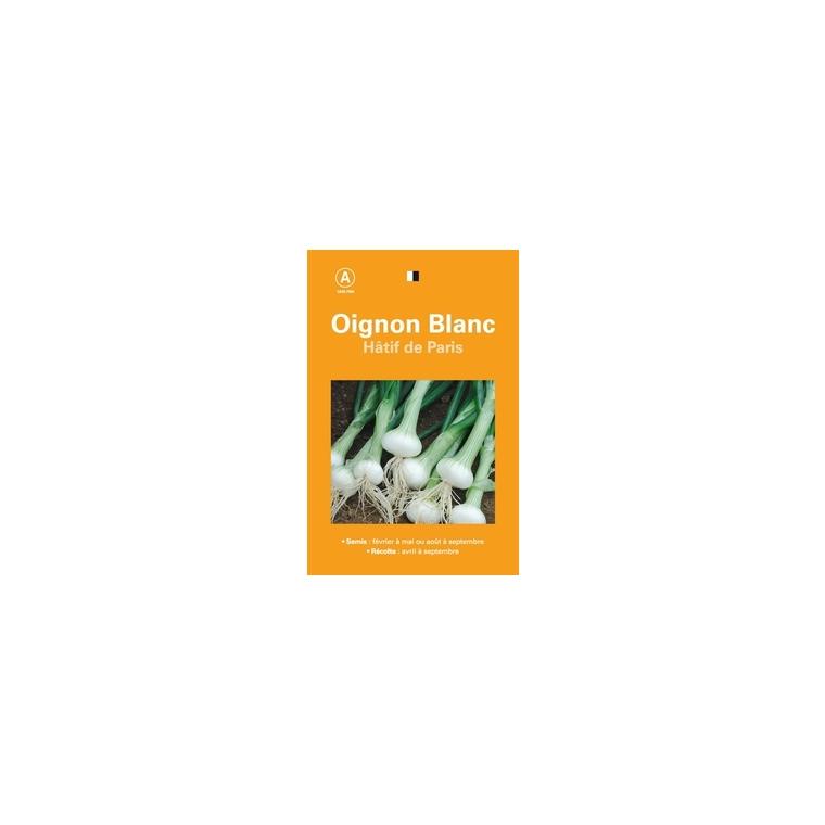 Sachet De 3Grammes Graines De Oignon Blanc H/âtif De Paris Graines Potag/ères /À Semer Les Graines Bocquet