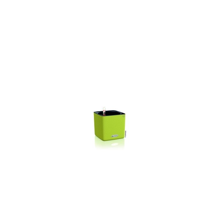Cube color 14 kit complet Citron Vert 14 x 14 x H13,5