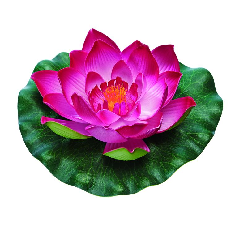Nénuphar factice Pontec Pondo Lily rouge