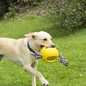 Ballon pour chien Interball Corde