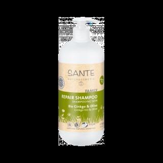 Shampooing soin Gingko et Olive SANTE