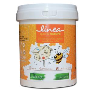 peinture naturelle pour ruche teinte aluminium abeilles. Black Bedroom Furniture Sets. Home Design Ideas