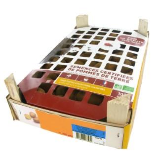 Pommes de terre Monalisa bio calibre 0001, 100 plants
