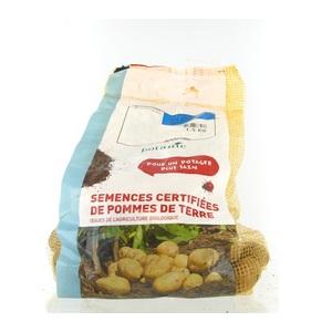 Pommes de terre Desiré bio calibre 0001, 1,5 kg