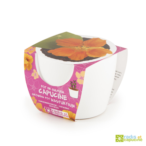 Mini Kit céramique Capucine