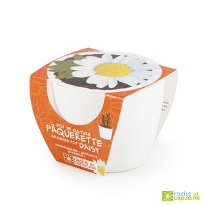 Mini kit céramique Pâquerette