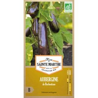 Aubergine de Barbentane 232596