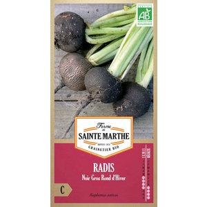 Radis-rave Noir Gros Rond d'Hiver 232620