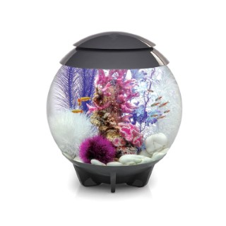 Aquarium BiOrb Halo gris 30L