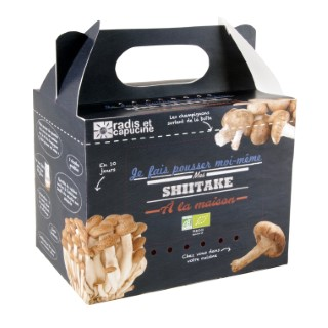 Kit de culture pour champignons shiitake bio 25x20x15 cm