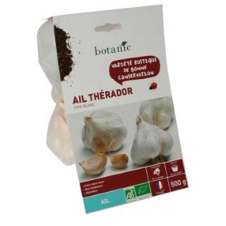 Bulbes d'ail blanc Therador AB bio 55+