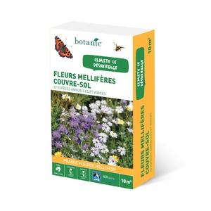 Fleurs mellifères couvre-sol