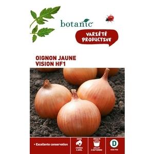 Oignon Jaune Vision HF1 261230