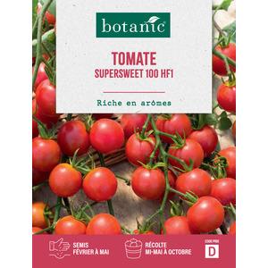 Tomate Supersweet 100 HF1 261269