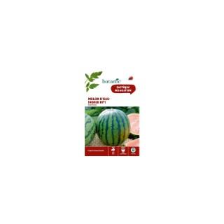 Melon d'Eau - Pastèque Ingrid HF1 261283