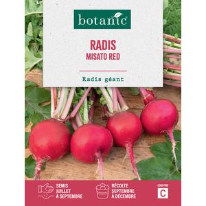 Radis misato red Insolite x2 sachets 261288