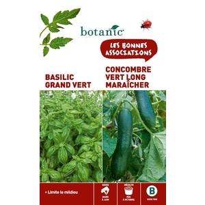 Basilic grand vert + concombre long maraicher Duo compagne 261291