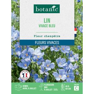 Lin vivace bleu