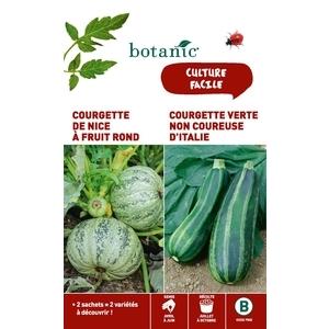 Courgette de nice a fruit rond + courgette verte non coureuse Duo potagere 261353