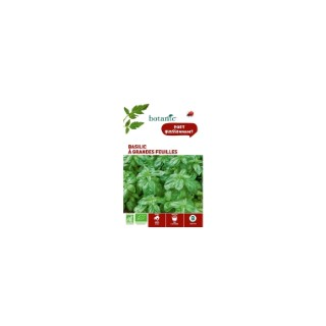 Basilic à Grandes Feuilles AB Bio 261363