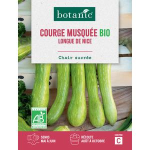 Courge Longue de Nice AB BIO 261383