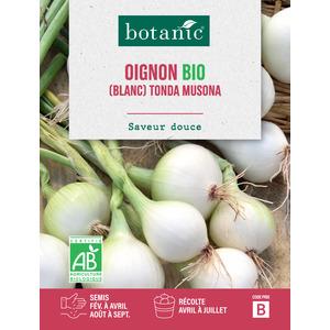 Oignon Tonda Musona AB Bio 261413