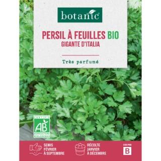 Persil Géant d'Italie AB BIO 261418