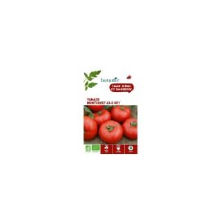 Tomate Montfavet 63-5 HF1 AB Bio