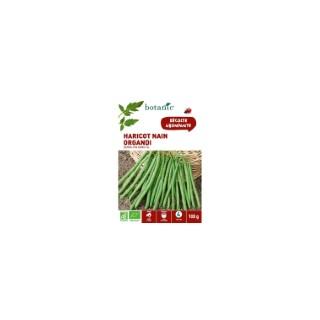 Graines de haricot nain organdi extra-fin sans fil bio botanic® 100 g 261454
