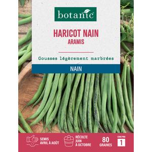Haricot nain aramis extra-fin sans fil 80 Graines 261458